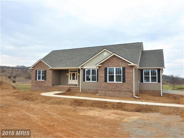148 Tilden Court, Winchester, VA 22603 (#FV10115328) :: AJ Team Realty