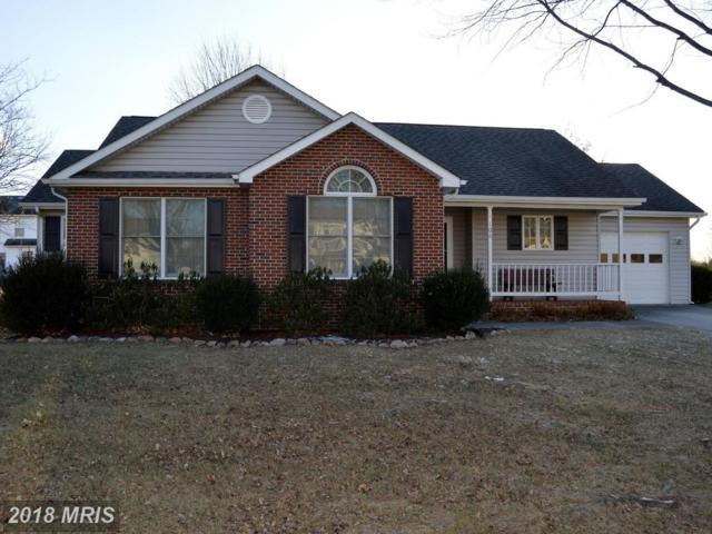 106 Tinoak Drive, Stephens City, VA 22655 (#FV10130872) :: Pearson Smith Realty
