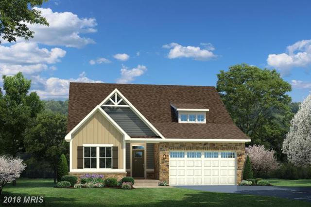 0095 Atlantis Lane, LAKE FREDERICK, VA 22630 (#FV10156314) :: Browning Homes Group