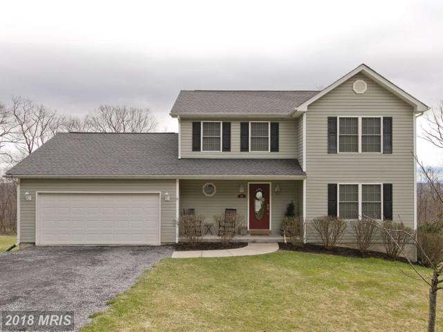 205 Hawk Trail, Winchester, VA 22602 (#FV10192012) :: Browning Homes Group