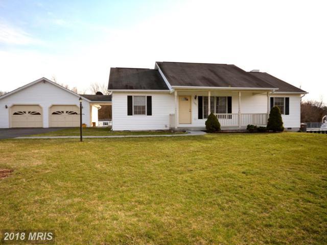181 Whitham Drive, Gore, VA 22637 (#FV10193592) :: Colgan Real Estate