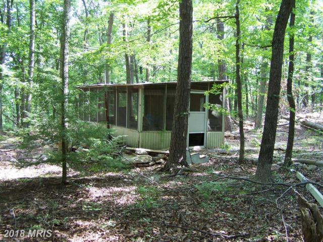 632 Cardinal Drive, Winchester, VA 22602 (#FV10324539) :: Browning Homes Group
