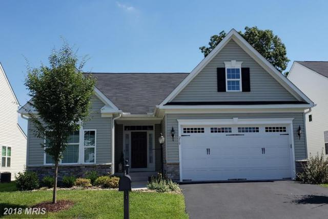 210 Mosaic Court, Stephenson, VA 22656 (#FV10340250) :: RE/MAX Gateway
