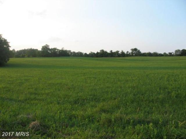 0 Apple Pie Ridge Road, Winchester, VA 22603 (#FV9534178) :: Pearson Smith Realty