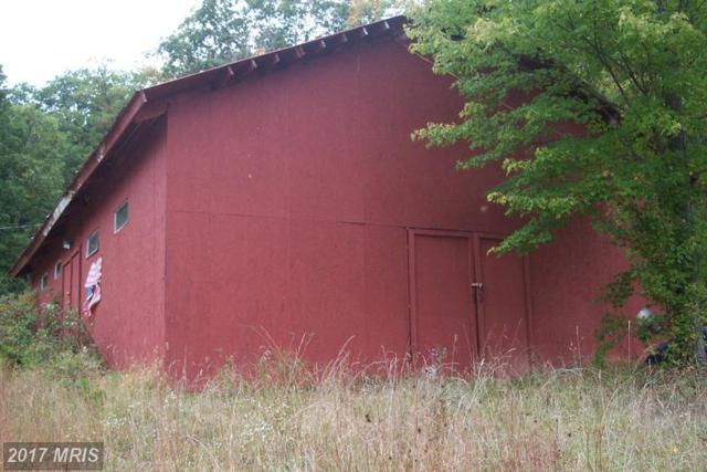 530 Fall Run Lane, Winchester, VA 22602 (#FV9779547) :: Pearson Smith Realty