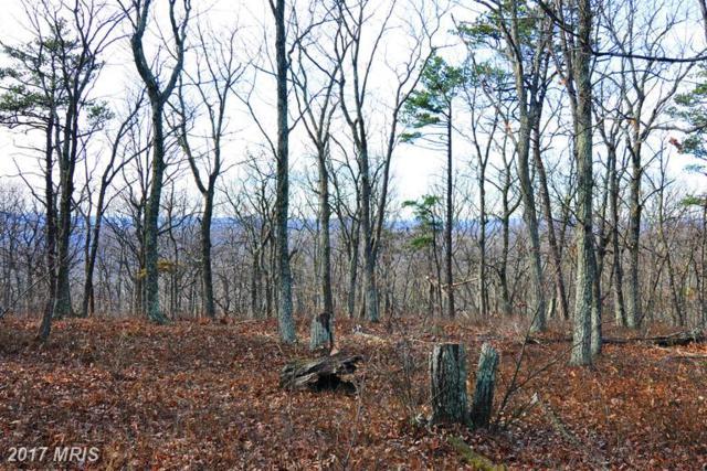 LOT 95 Bobcat Trail, Winchester, VA 22602 (#FV9820098) :: LoCoMusings