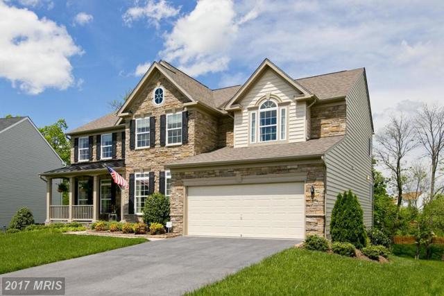 401 Lynnehaven Drive, Winchester, VA 22602 (#FV9858682) :: LoCoMusings