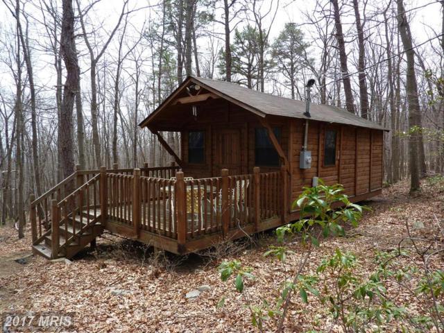 301 Great Mountain Lane, Winchester, VA 22602 (#FV9874368) :: Pearson Smith Realty