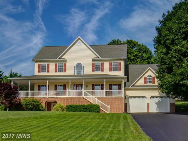 137 Stonebrook Road, Winchester, VA 22602 (#FV9898908) :: Pearson Smith Realty