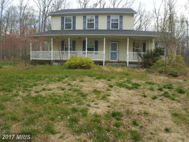 306 Mountain Falls Boulevard, Winchester, VA 22602 (#FV9934610) :: LoCoMusings