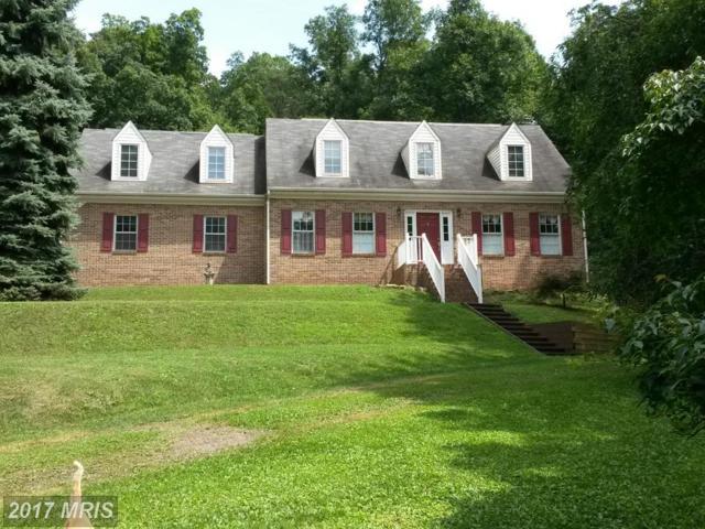 341 Robin Hood Circle, Winchester, VA 22603 (#FV9939561) :: Pearson Smith Realty