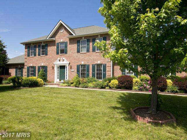 135 Travis Court, Winchester, VA 22602 (#FV9943644) :: Pearson Smith Realty