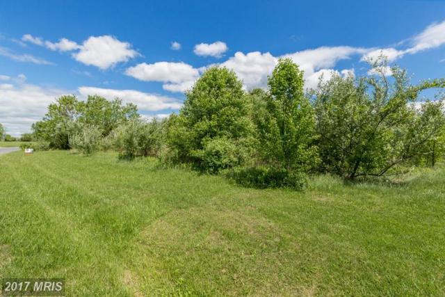 0 Tavistock Drive, Winchester, VA 22602 (#FV9945162) :: Pearson Smith Realty