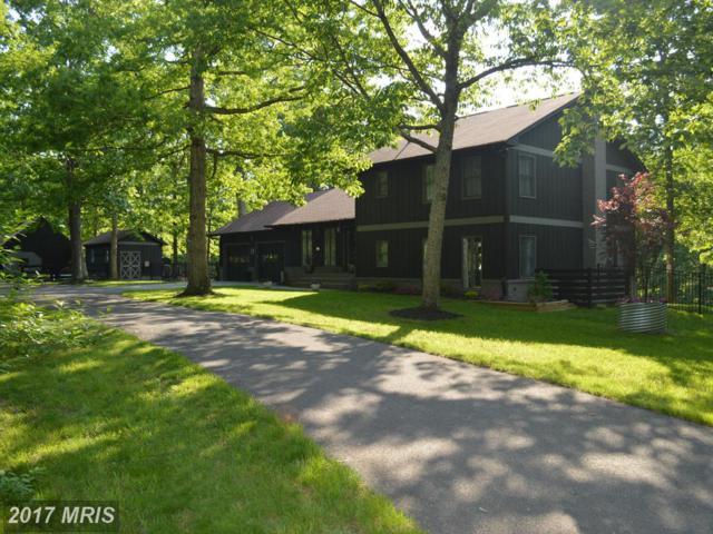 511 Fishel Road, Winchester, VA 22602 (#FV9951137) :: LoCoMusings