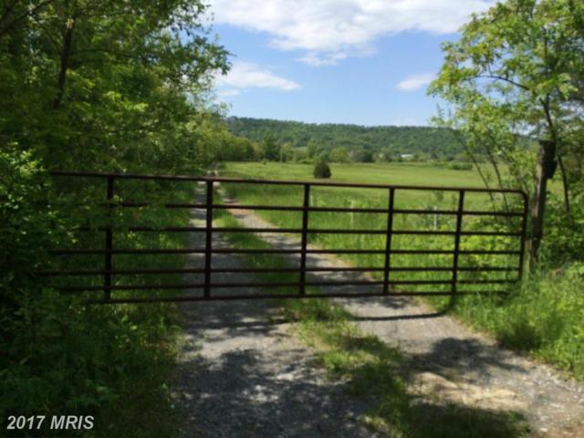 368 Miller Road, Winchester, VA 22602 (#FV9951855) :: LoCoMusings
