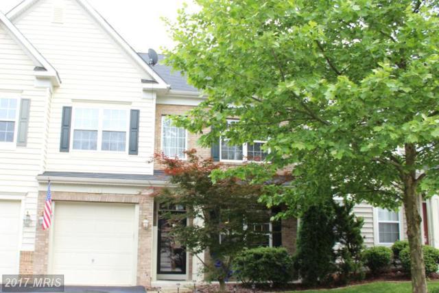 308 Quinton Oaks Circle, Stephens City, VA 22655 (#FV9955174) :: LoCoMusings