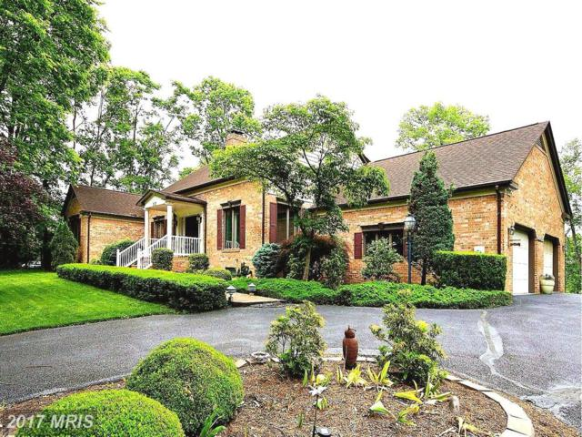 212 Mcguire Road, Winchester, VA 22603 (#FV9956081) :: Pearson Smith Realty