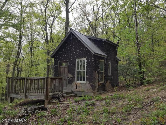 1280 Bobcat Trail, Winchester, VA 22601 (#FV9959539) :: LoCoMusings