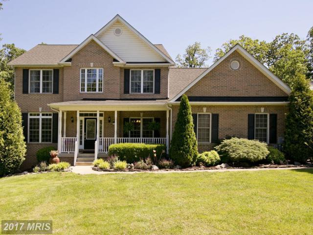 203 Custer Avenue, Winchester, VA 22602 (#FV9967648) :: Pearson Smith Realty