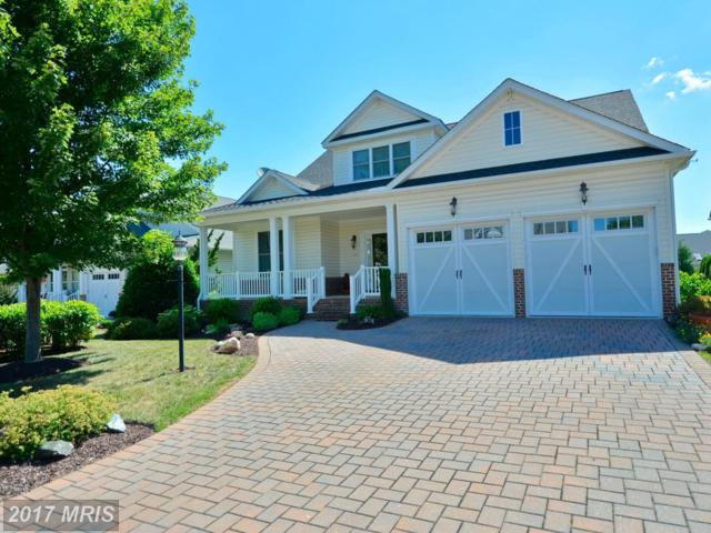 148 Harvest Ridge Drive, Winchester, VA 22601 (#FV9973533) :: Pearson Smith Realty
