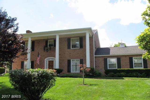 104 Dutton Place, Winchester, VA 22601 (#FV9981100) :: LoCoMusings