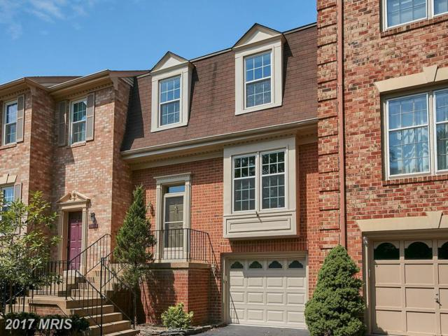 5802 Iron Willow Court, Alexandria, VA 22310 (#FX10010012) :: Pearson Smith Realty
