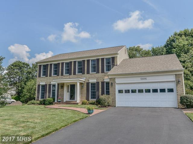 12606 Hay Meadow Place, Herndon, VA 20171 (#FX10011251) :: Pearson Smith Realty