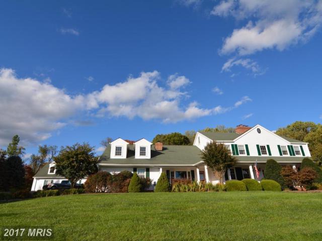 214 Donmore Drive, Great Falls, VA 22066 (#FX10012331) :: LoCoMusings