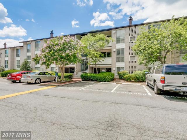 5602 Bloomfield Drive #3, Alexandria, VA 22312 (#FX10012931) :: Pearson Smith Realty
