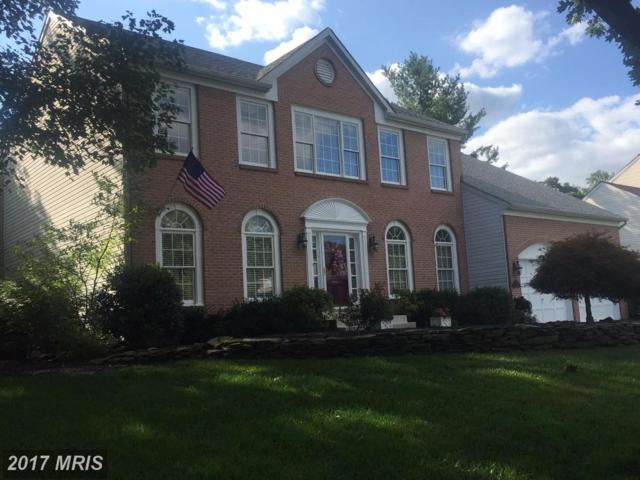 13117 Willow Edge Court, Clifton, VA 20124 (#FX10016991) :: Browning Homes Group