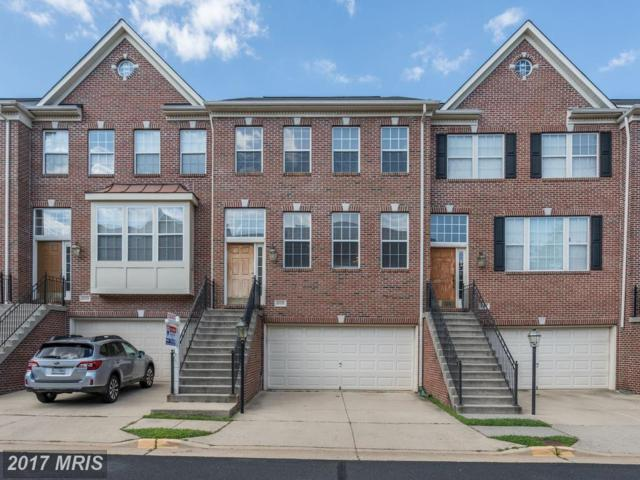 4105 Dallas Hutchison Street, Chantilly, VA 20151 (#FX10024530) :: Pearson Smith Realty