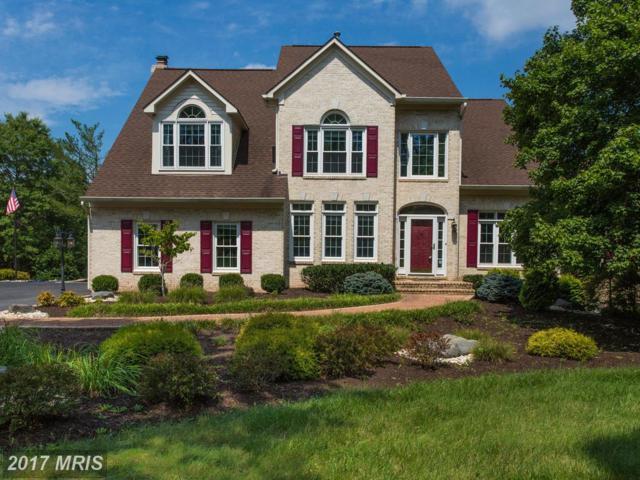 14924 Cub Run Park Drive, Centreville, VA 20120 (#FX10032818) :: Jacobs & Co. Real Estate
