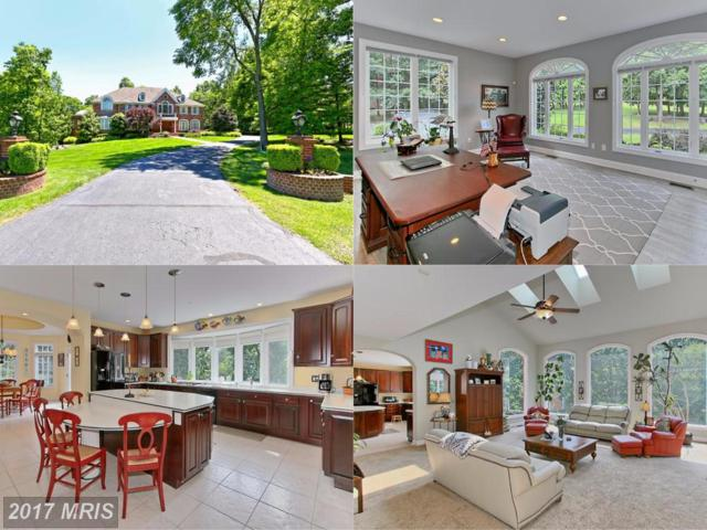 15408 Kentwell Circle, Centreville, VA 20120 (#FX10035569) :: The Vashist Group