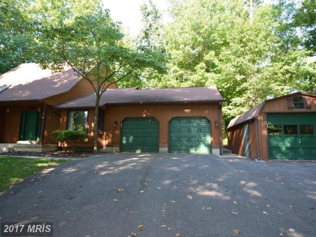 6507 Walter Drive, Alexandria, VA 22315 (#FX10036167) :: MidAtlantic Real Estate
