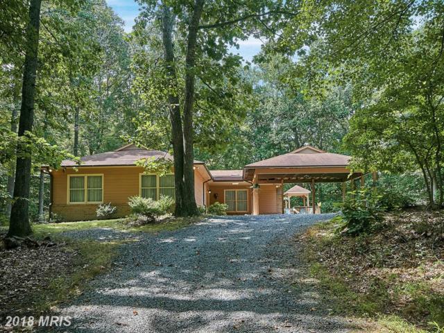 12213 Henderson Road, Clifton, VA 20124 (#FX10039278) :: Pearson Smith Realty