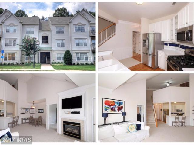 12481 Hayes Court #303, Fairfax, VA 22033 (#FX10039409) :: Pearson Smith Realty