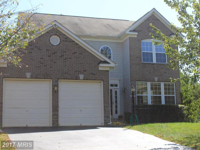 8467 Catia Lane, Springfield, VA 22153 (#FX10044169) :: Pearson Smith Realty