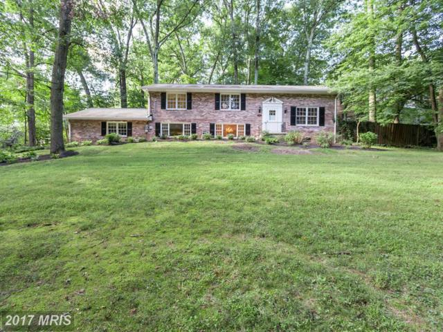 8517 Forest Street, Annandale, VA 22003 (#FX10046801) :: Pearson Smith Realty
