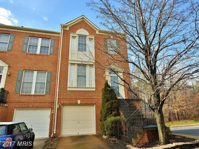 6688 Debra Lu Way, Springfield, VA 22150 (#FX10048663) :: Pearson Smith Realty