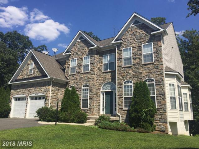 4917 Virginia Street, Alexandria, VA 22312 (#FX10051313) :: Green Tree Realty