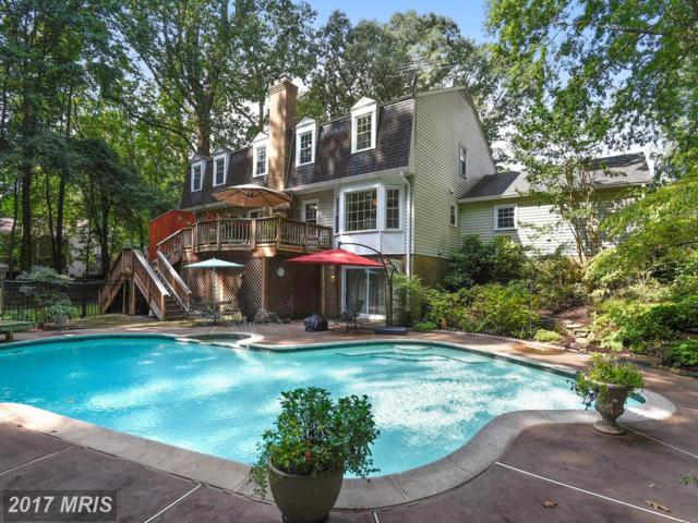11806 Grey Birch Place, Reston, VA 20191 (#FX10055586) :: The Belt Team
