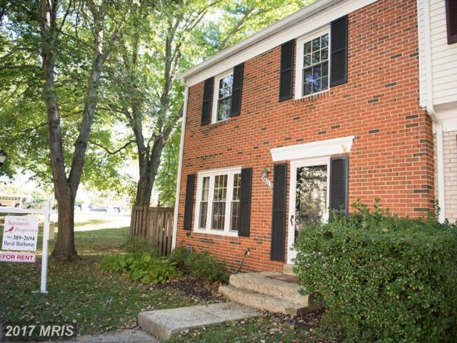 5411 Donnelly Court, Springfield, VA 22151 (#FX10059246) :: LoCoMusings