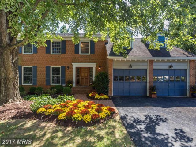 8005 Snowpine Way, Mclean, VA 22102 (#FX10062914) :: Arlington Realty, Inc.
