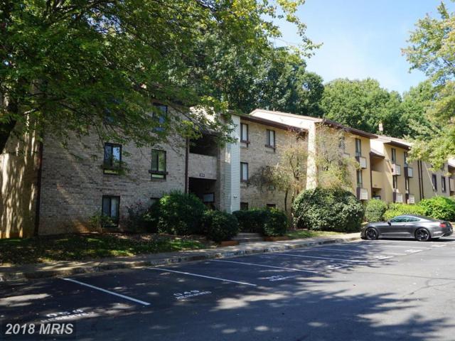 2214 Castle Rock Square 2B, Reston, VA 20191 (#FX10065986) :: Pearson Smith Realty