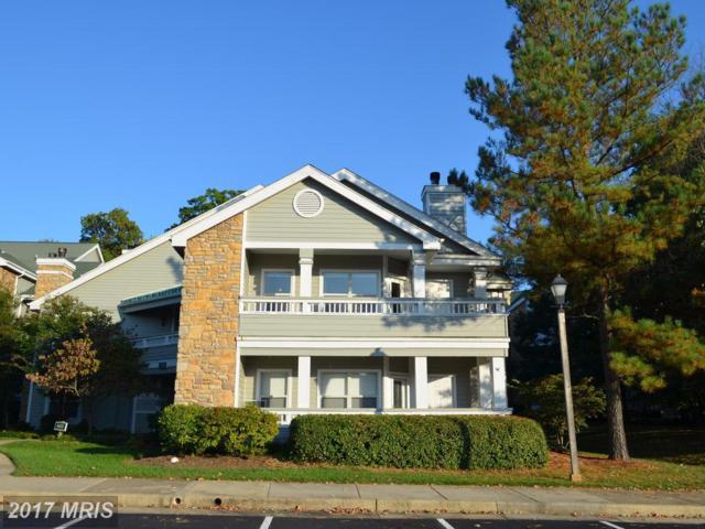 4435 Fair Stone Drive #203, Fairfax, VA 22033 (#FX10081734) :: LoCoMusings
