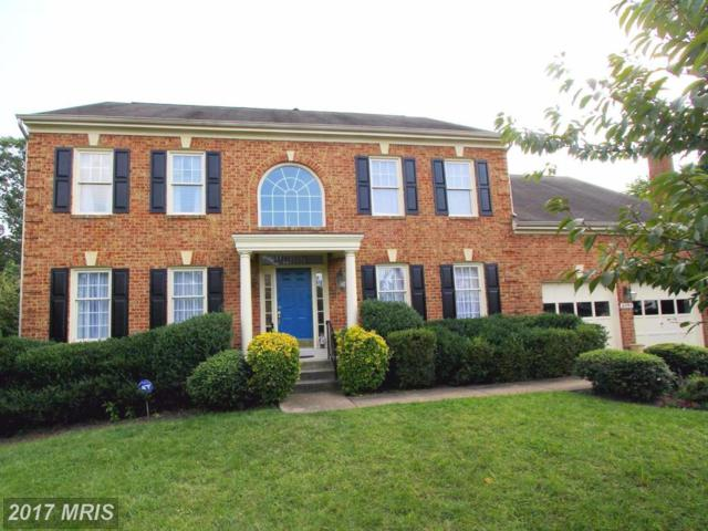 6395 True Lane, Springfield, VA 22150 (#FX10082350) :: RE/MAX Executives