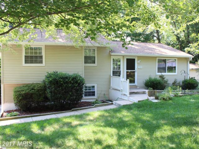 7900 Orange Plank Road, Springfield, VA 22153 (#FX10083355) :: Pearson Smith Realty