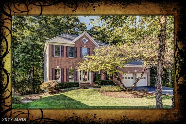 2506 Camberwell Court, Oak Hill, VA 20171 (#FX10085393) :: The Vashist Group