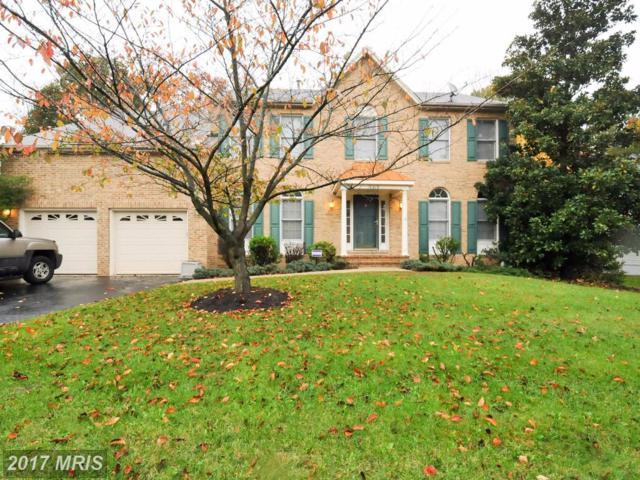 6519 Trillium House Lane, Centreville, VA 20120 (#FX10088113) :: Pearson Smith Realty