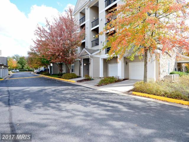 5130 Brittney Elyse Circle I, Centreville, VA 20120 (#FX10088933) :: Pearson Smith Realty